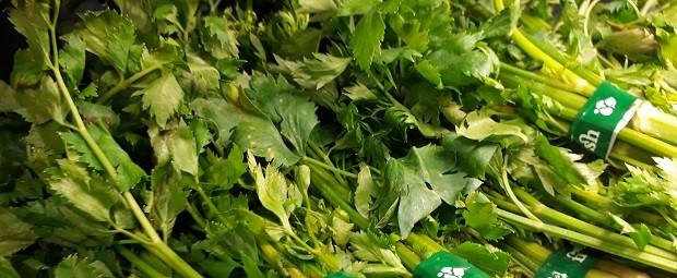 green food buat apa supplemen makanan untuk kesehatan ?