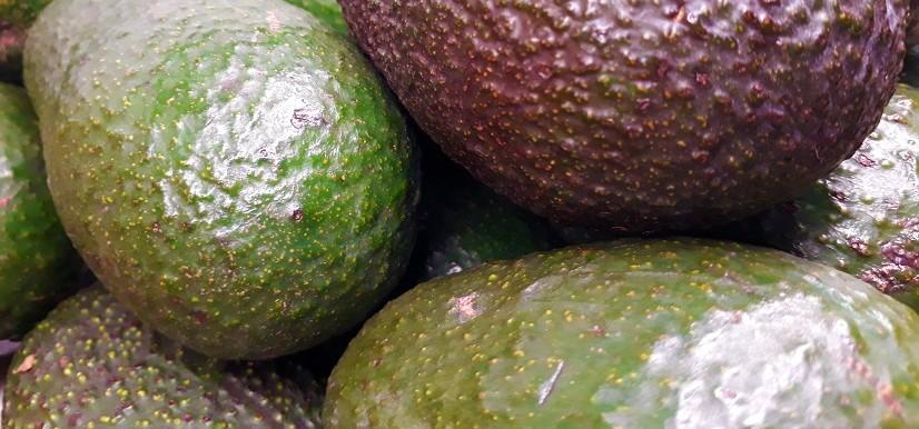 avocado Apa itu Superfood, dan Makanan Apa Saja yang Termasuk Superfood Di Jakarta ?
