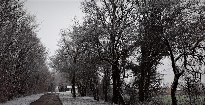 20 tahun barusan ketemu salju lagi saat jalan ke Perancis